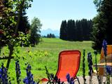 Die ostallgäuer Landschaft und Natur rund um den Ponyhof-Prem