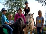Naturidylle am Ponyhof-Prem bei der Alpenkrimiautorin Nicola Förg